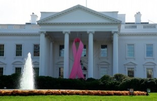 Pink Ribbon Hangs On White House For Breast Cancer Awareness